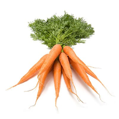 ingredient-carrot