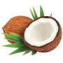 OG_Water_Tropical_Coconut_ProductPage-