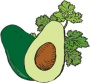avocado-cilantro-icon